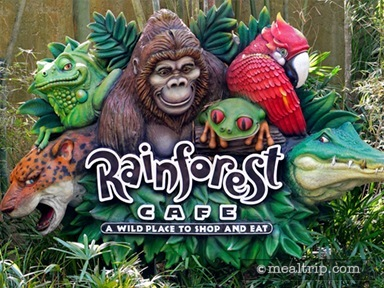 Rainforest Café at Disney's Animal Kingdom
